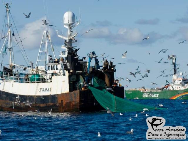Sobrepesca - Barco em pesca de arrasto sendo observado pelo GreenPeace