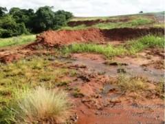 Usina e multada por destruir nascentes para plantio de cana no MS