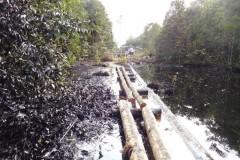 Vazamento de oleoduto no Peru polui dois rios da Amazonia 2