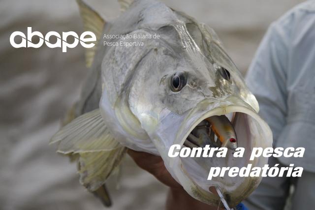 abape-contra-a-pesca-predatoria-no-sul-da-bahia