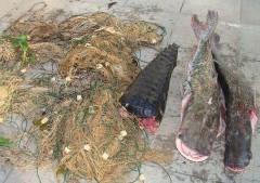 apreensao de material de pesca predatoria no pantanal