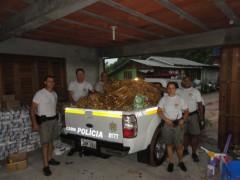 Mais de 4 toneladas de palmito improprio para consumo apreendido no RS (Foto: Divulgação Patram-RS)