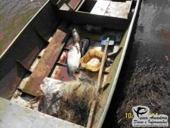 apreensao realizada pelo IAP no rio Ivai 2