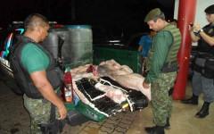 boto apreendido pelo batalhao ambiental do amazonas