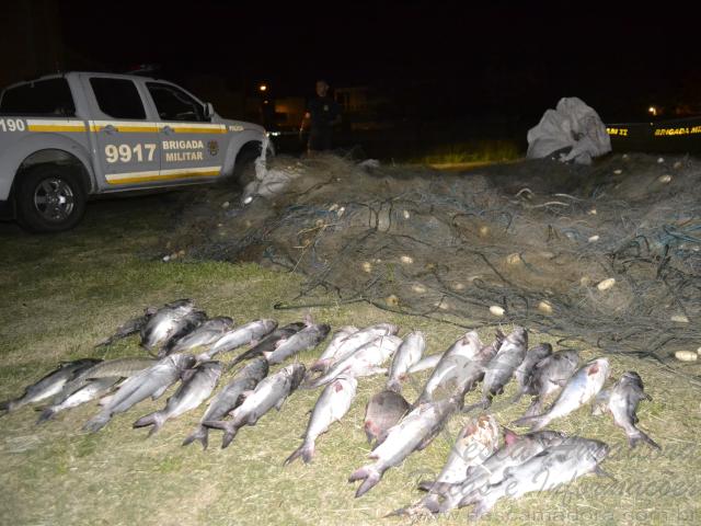 brigada militar apreende redes e pescado no RS