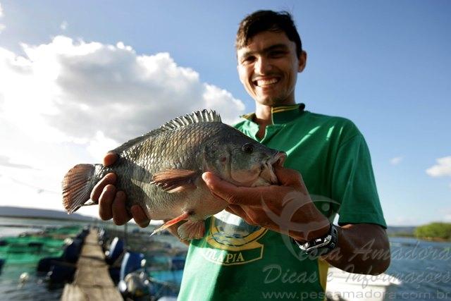 cooperativismo no setor pesqueiro