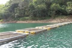 criacao de peixes em tanques rede