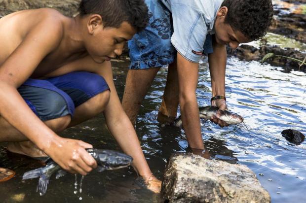 criancas pescam em agua impropria em Porto Alegre