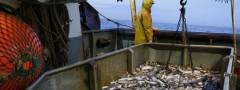 Japão contesta nova lei de pesca no mar do sul da China (Foto Divulgação: Arquivo)