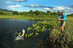 licenca de pesca embarcada - pesca de barranco