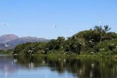parque-pantanal-mt