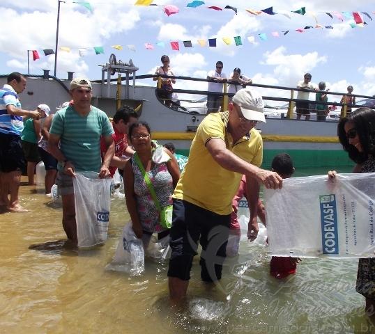 peixamento realizado pela codevasf em Penedo-AL