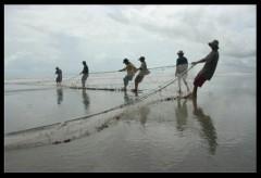 pesca de arrato 2