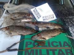 pescado apreendido em Uberlandia-MG