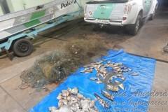 pescado e tarrafas apreendidos pela PMA em Sao Jose do Rio Preto-SP