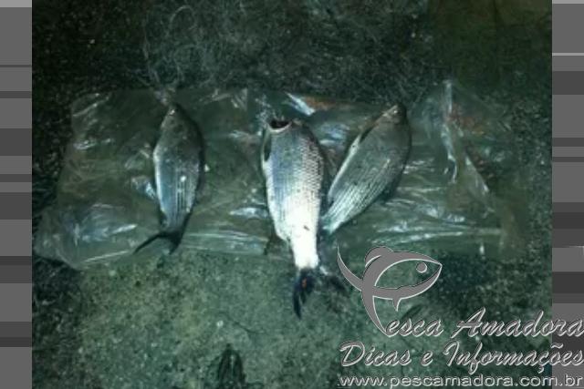 pma apreende material ilegal de pesca no rio iguacu no PR