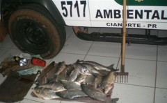 Material e peixes apreendidos pela PMA do Paraná (Foto Divulgação: PMA-PR)