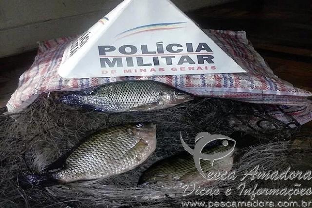 redes e pescado apreendidos pela PMA de Santos Dumont-MG