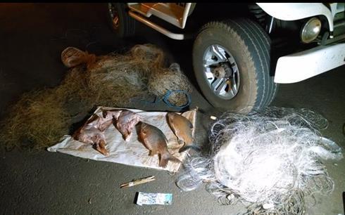 redes porco do mato e peixes apreendidos em Itambe-PR