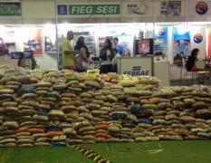Tres mil toneladas de alimentos não pereciveis foram arrecadados no evento