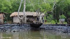 vazamento de oleo no Niger em 2008 2